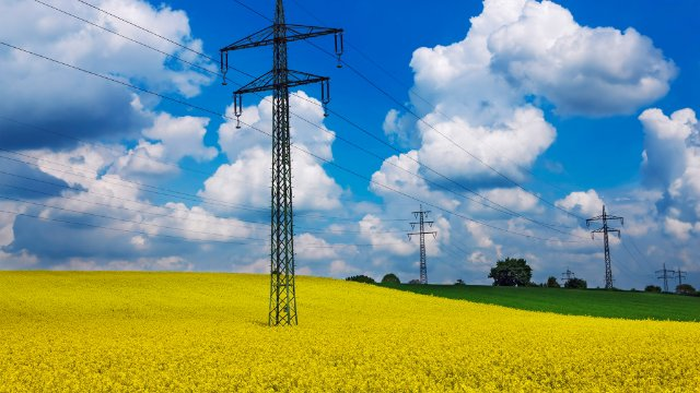 Transmission tower in a field
