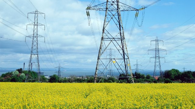 Transmission towers in a meadow