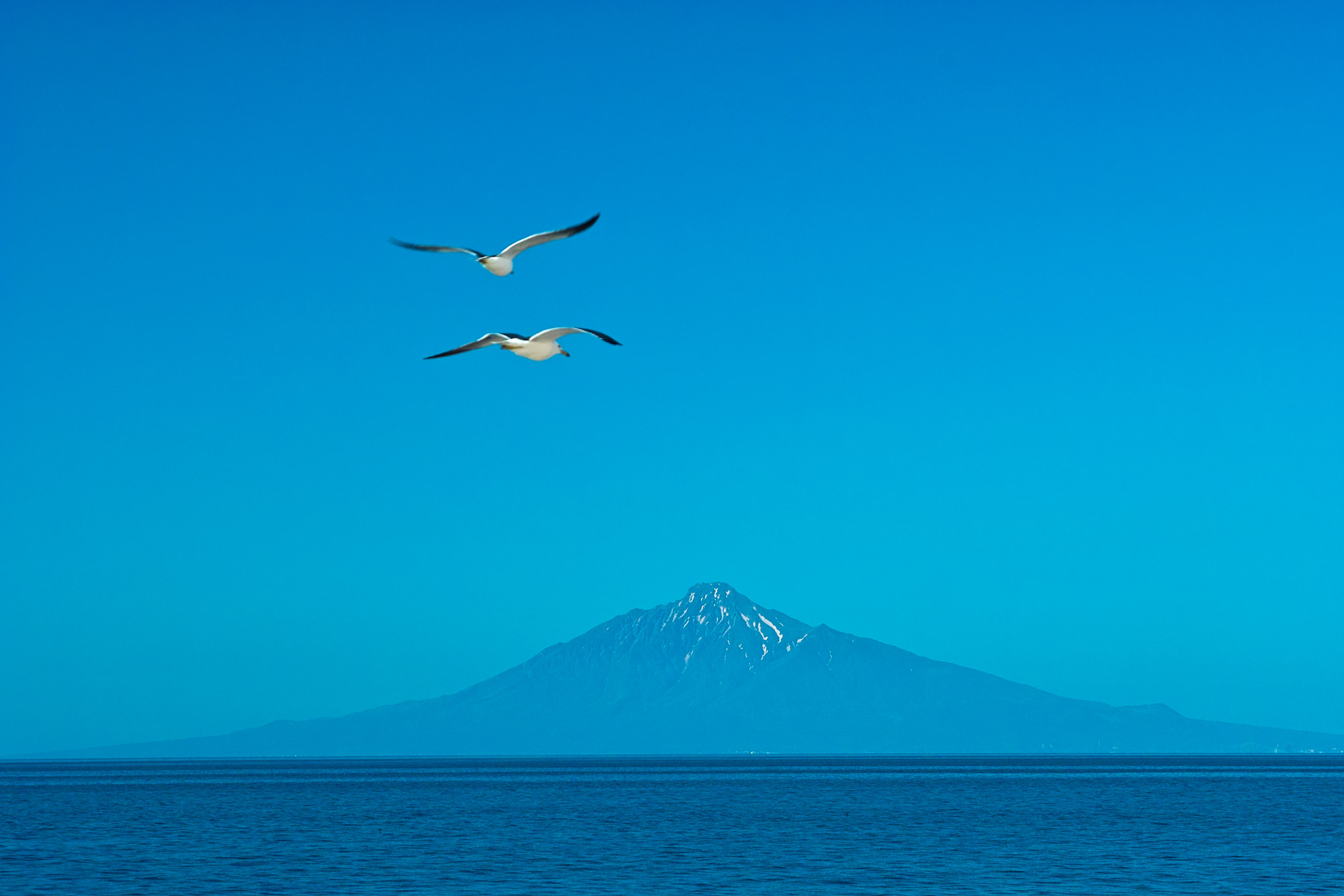 blue sky, mountains, birds and sea