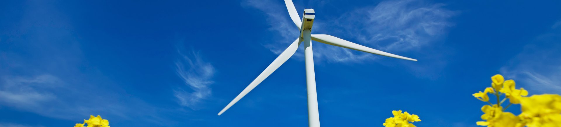 Photo of wind turbine used to generate power by utilities companies