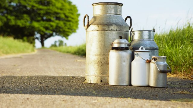 Jugs of milk sitting on the road