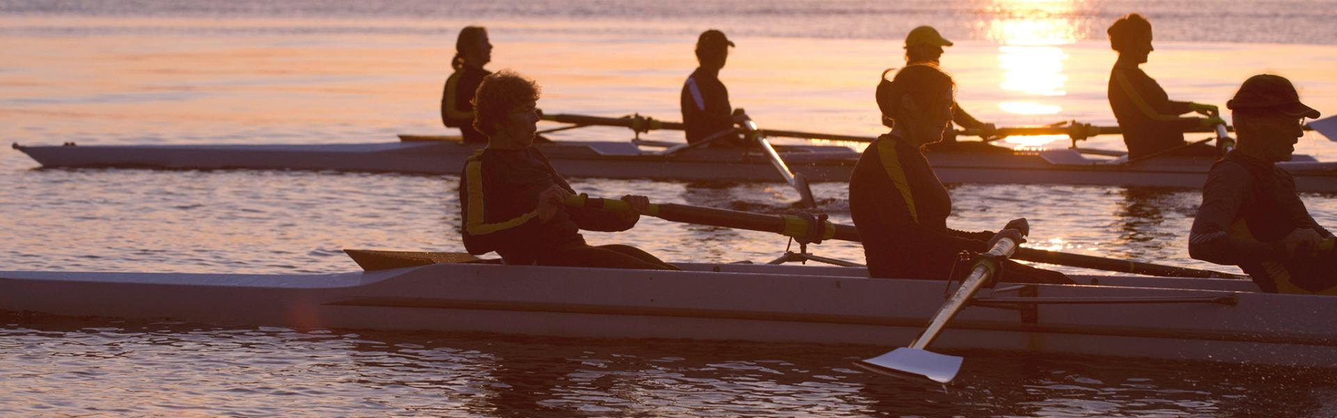 Rowing regatta at sunset