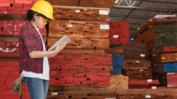 Production planning employee in lumber factory using SAP software