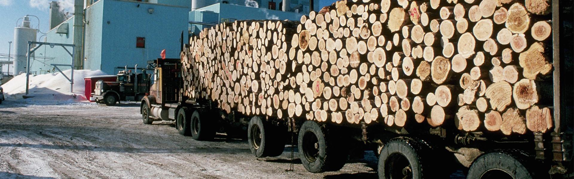 Logging truck at a pulp and paper mill