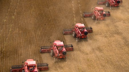 Combines harvesting soybeans in rural Brazil