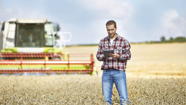 Farmer using a tablet in a field