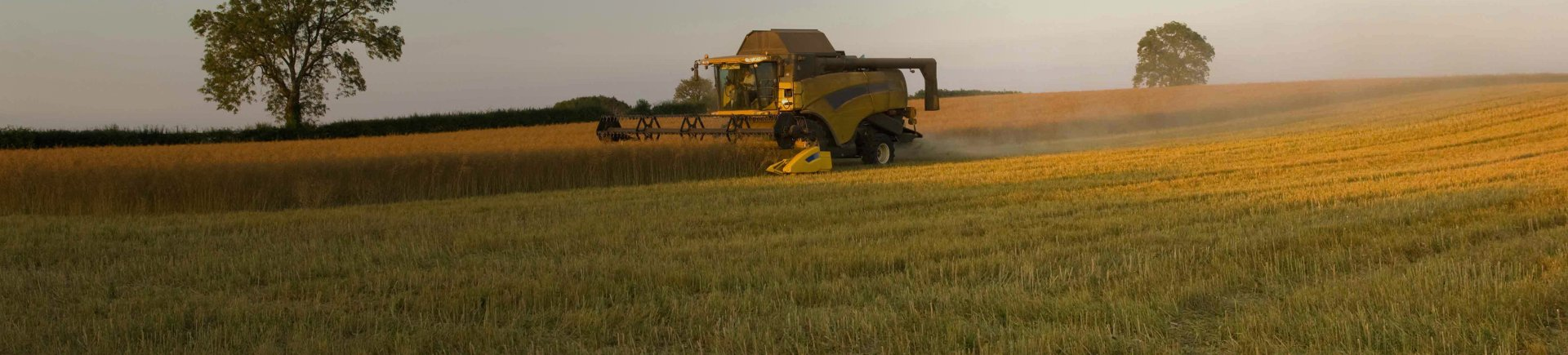 Image of a combine in a wheat field, representing the agribusiness industry