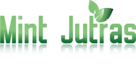 Mint Jutras analyst logo