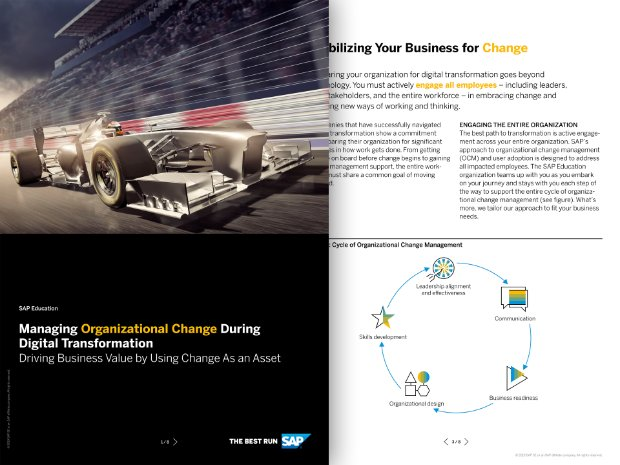 Screenshot of a brochure on education consulting services from SAP