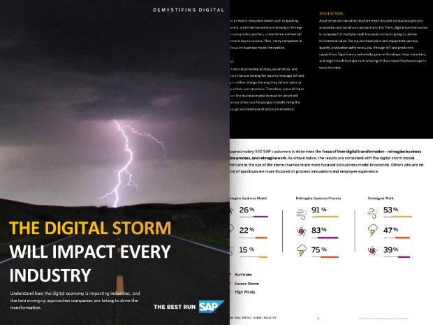 Preview of the asset The Digital Strom
