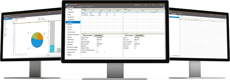 Screenshots of SAP IQ software
