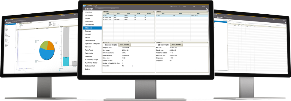 Screenshot of SAP IQ software