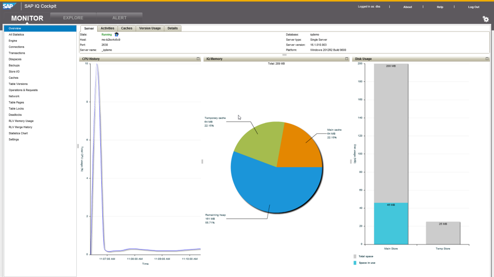Screenshot of software running on SAP IQ